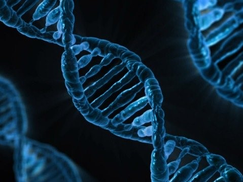Cybersecurity and DNA Tests